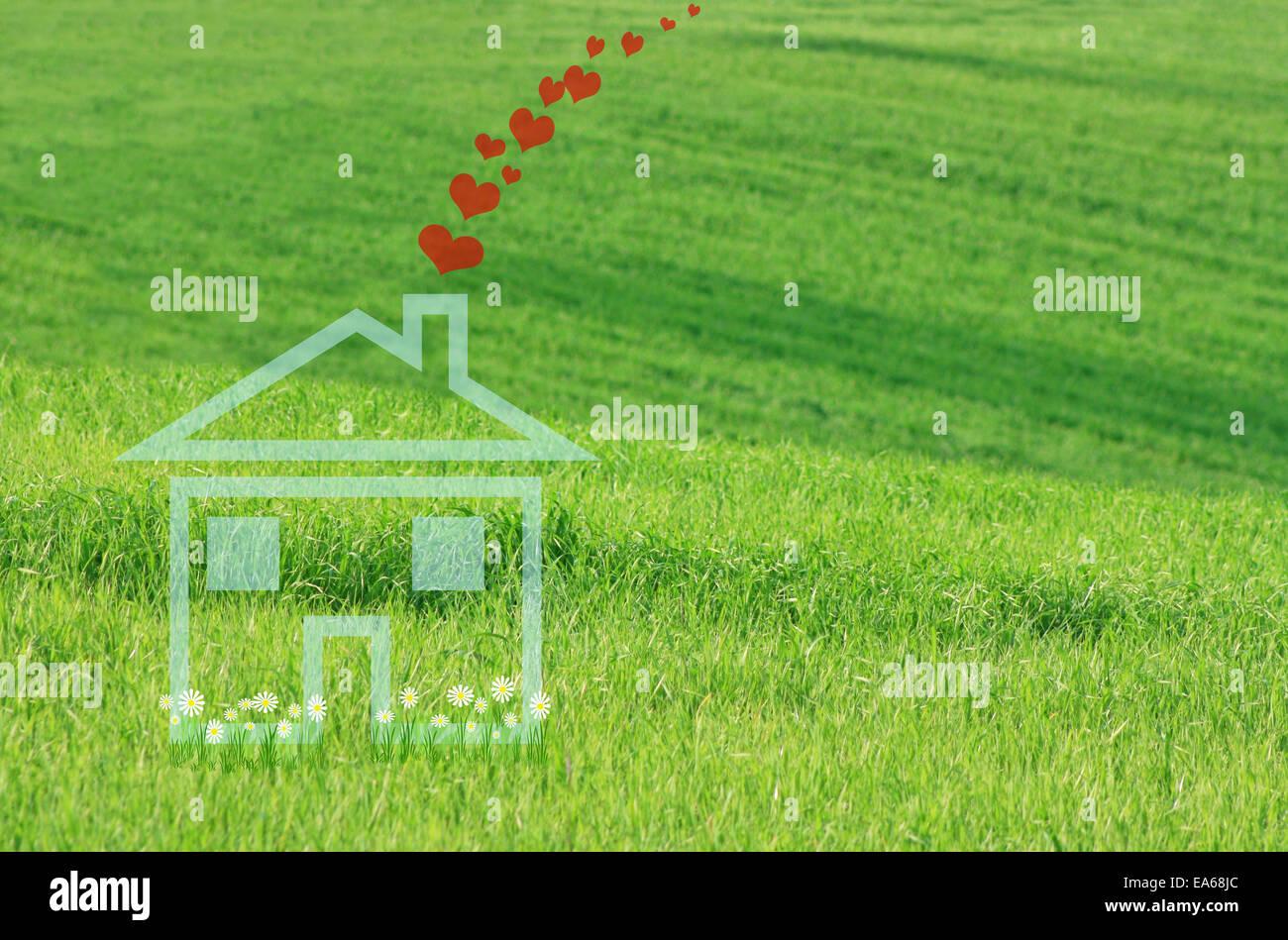 Casa da sogno con margherite Immagini Stock