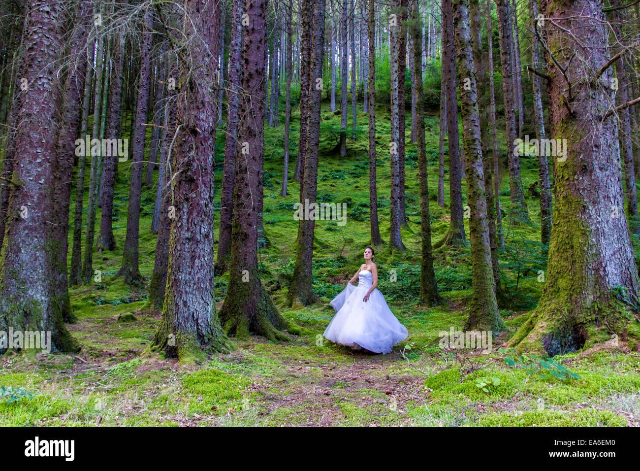 Regno Unito, Scozia, donne in abito da sposa in foresta Foto Stock