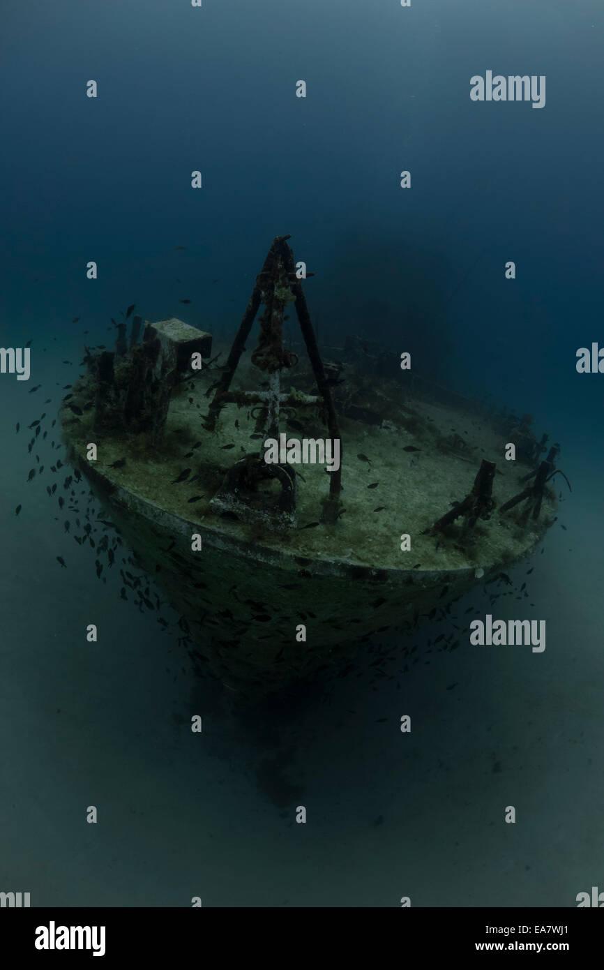 P31 relitto a Comino e Malta, mare Mediterraneo. Una vecchia imbarcazione di pattuglia affondata da un Dive attrazione. Foto Stock