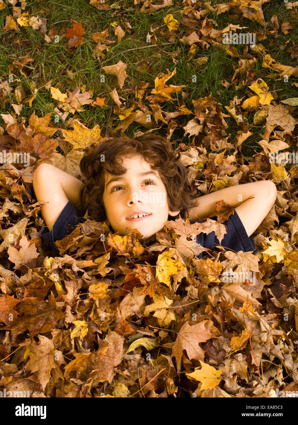 Il ragazzo si trova in foglie e guarda al cielo, kid, gioventù, autunno autunno, play Immagini Stock