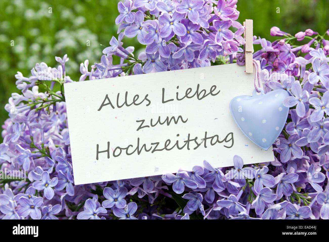 Auguri Di Matrimonio In Tedesco : Il tedesco anniversario di matrimonio scheda con il lilla foto
