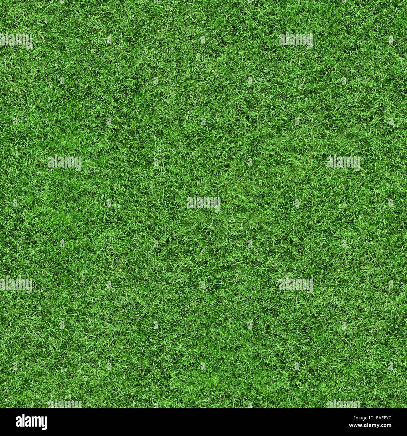 Verde erba texture di sfondo senza giunture, perfetto per la natura, l'ambiente, sport e molto di più ... Immagini Stock