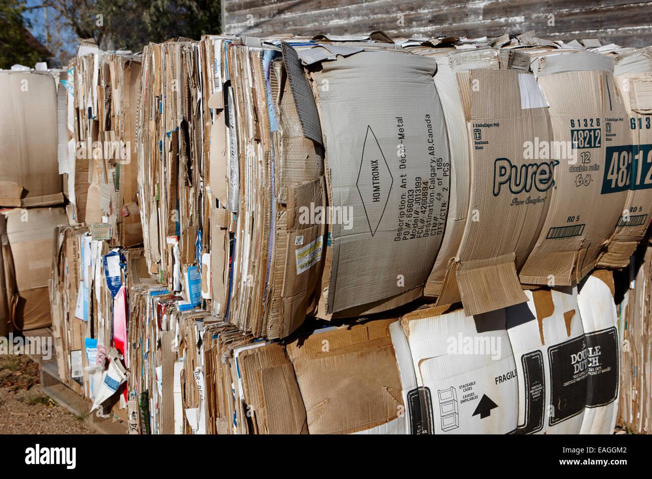 Balle di cartone per il riciclo di Saskatchewan in Canada Immagini Stock