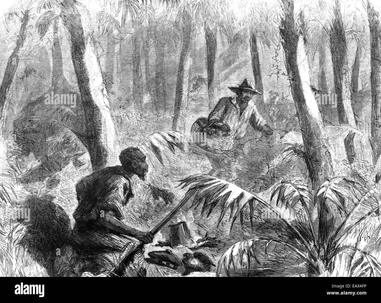 La schiavitù 1862 engaving di runaway slave che riceve il cibo da un amico nelle paludi della st Andrews parrocchia, Immagini Stock