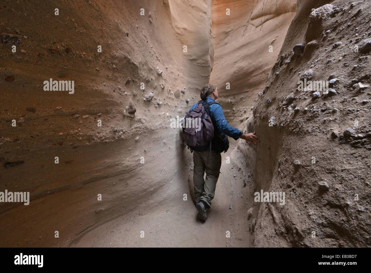 Stati Uniti, California, Anza-Borrego Desert State Park, gli escursionisti a piedi attraverso Palm Canyon Canyon Immagini Stock