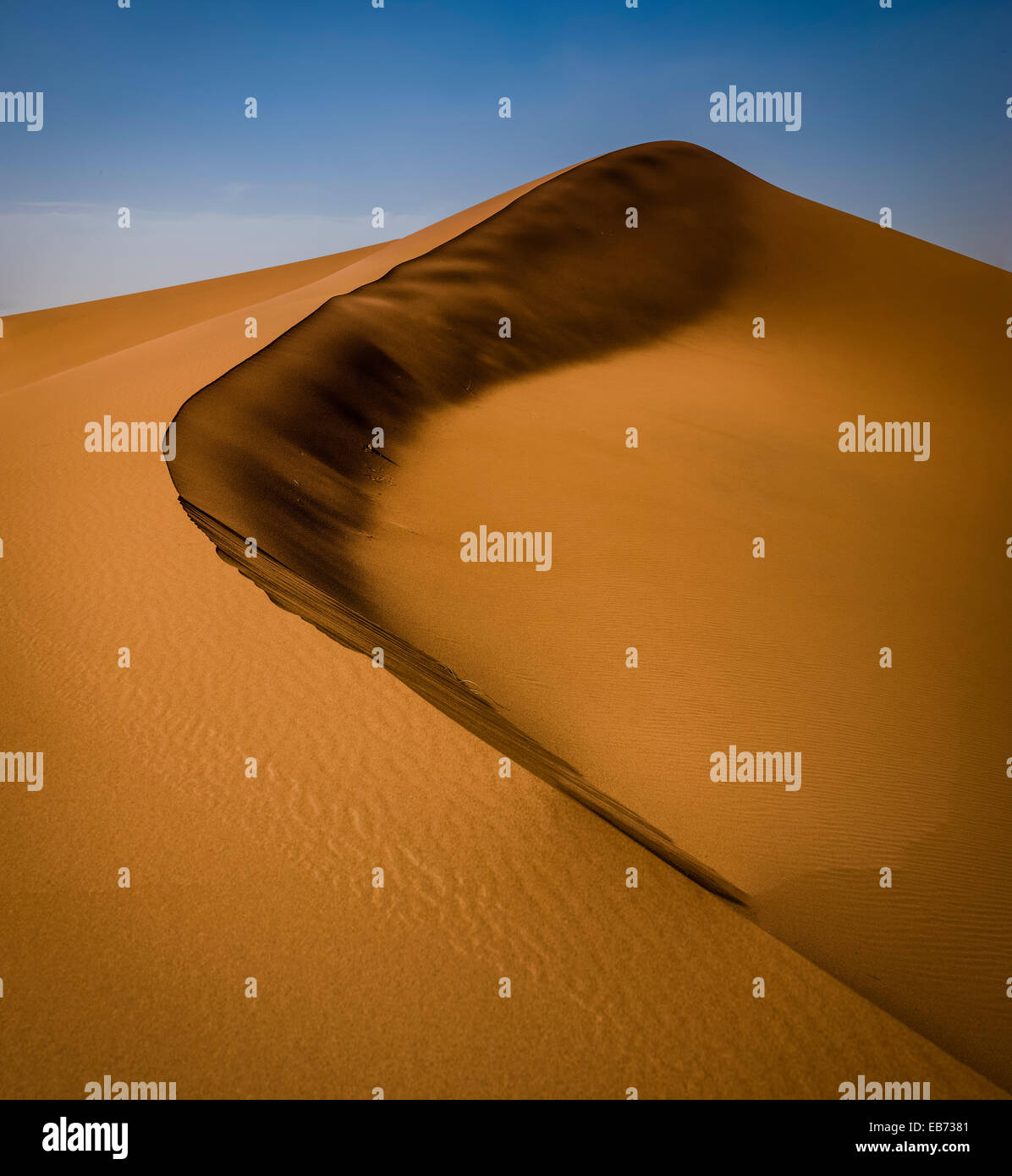 Deserto del Sahara ERG ZHAR MAROCCO AFRICA DUNE Immagini Stock