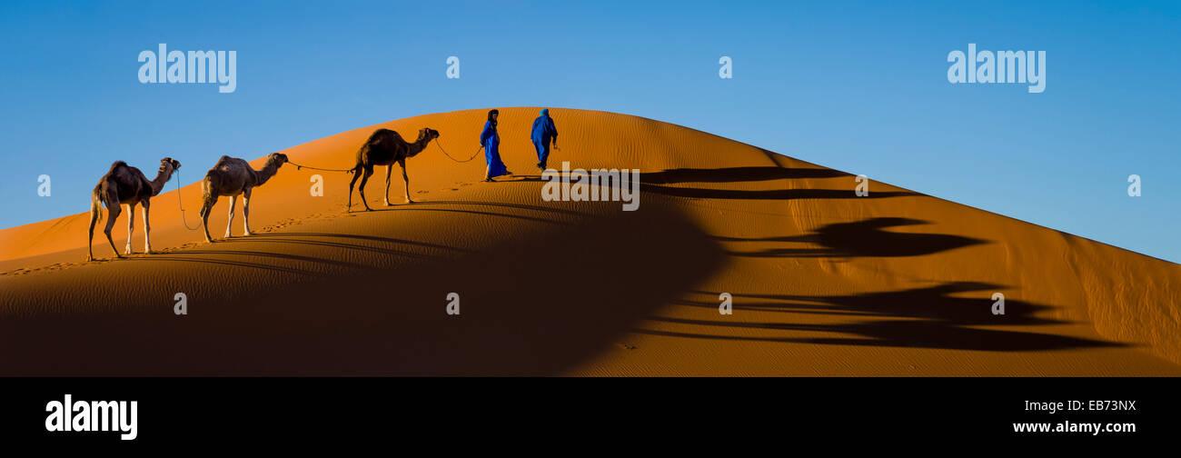 CARAVAN DESERTO DEL SAHARA ERG CHEBBI MERZOUGA MAROCCO Immagini Stock