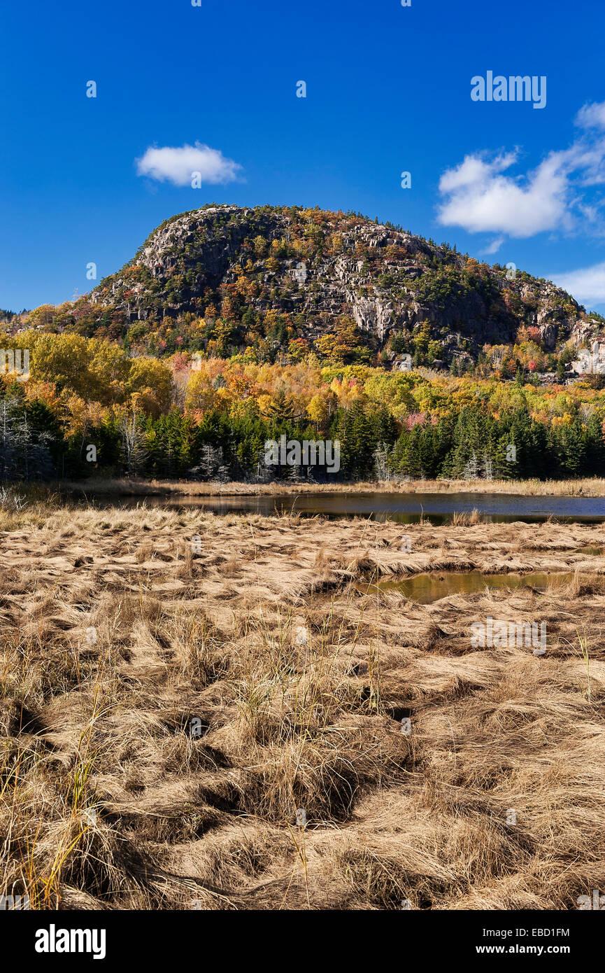 Bolla di montagna, parco nazionale di Acadia, isola di Mount Desert, Maine, Stati Uniti d'America Immagini Stock