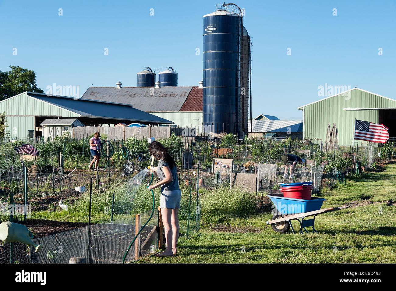 Irrigazione donna la sua traccia in un orto comunitario. Foto Stock