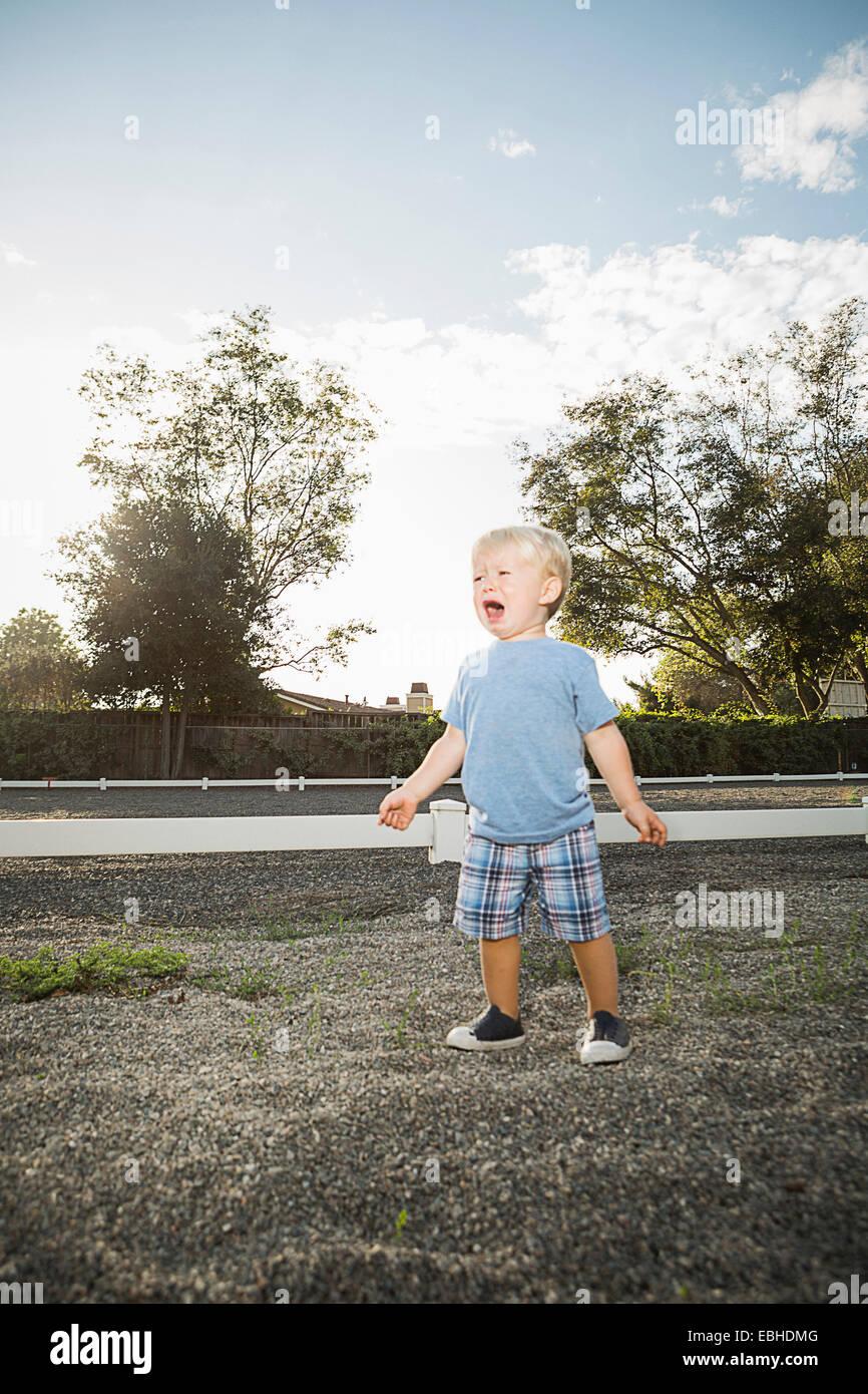 Giovane ragazzo urlando Immagini Stock