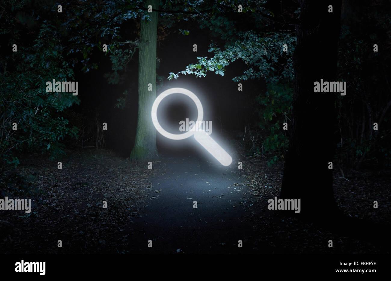 Foresta di notte, con illuminato il simbolo di ricerca Immagini Stock