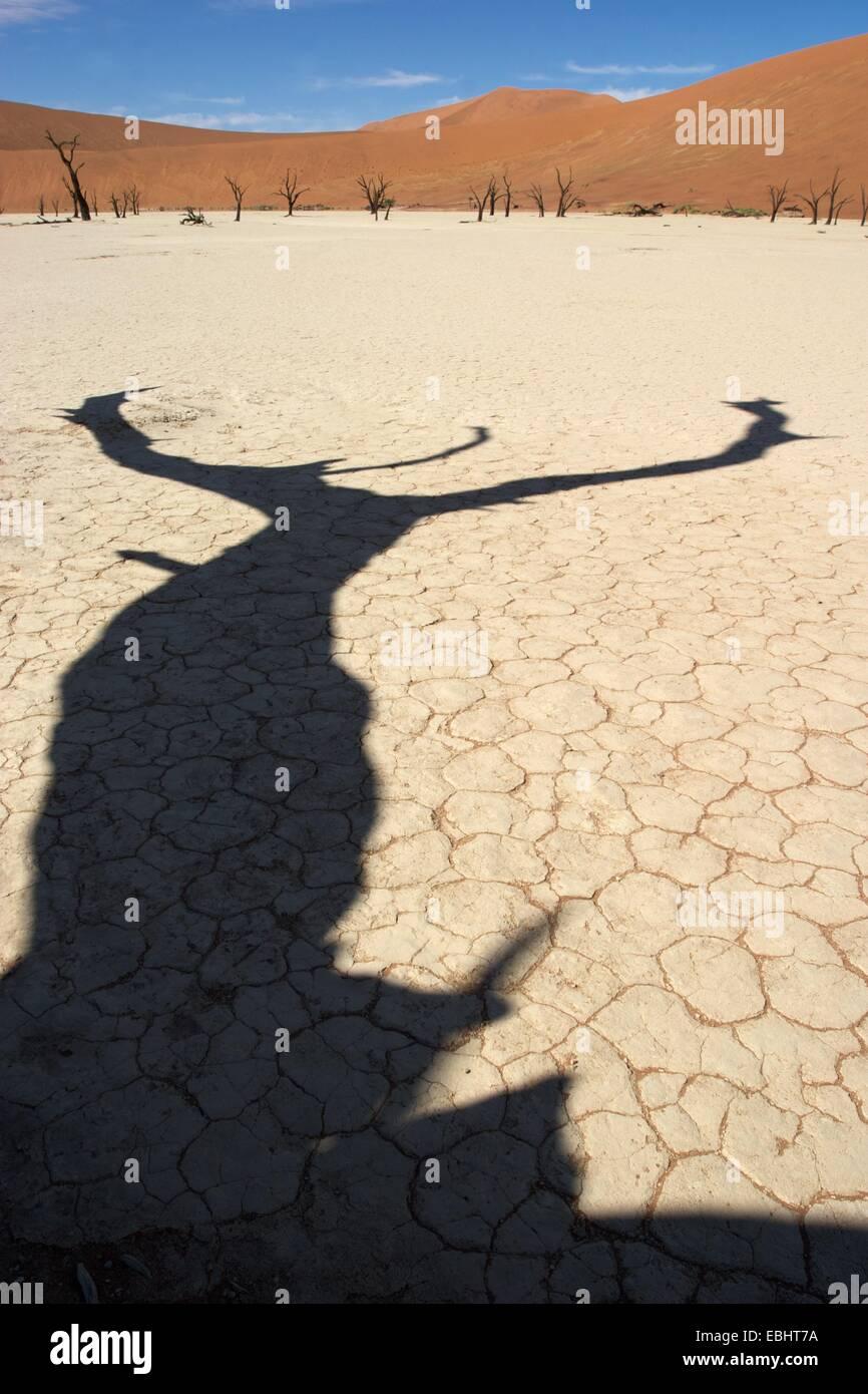 Sossusvlei è un sale e pan di argilla circondata da alte dune rosse si trova nella parte meridionale del deserto del Namib in Namibia. Foto Stock