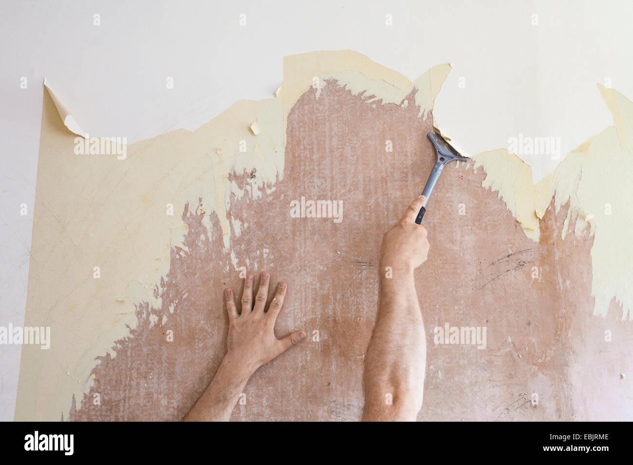 Uomo maturo con il raschiatore di raschiare via il vecchio wallpaper Immagini Stock