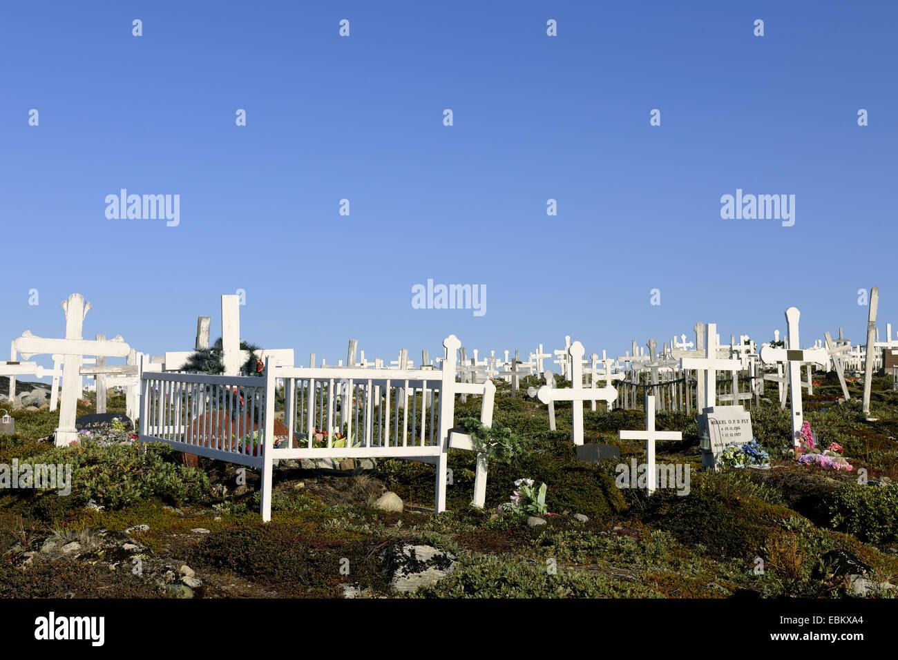 White ha dato attraversa su un cimitero, Groenlandia, Ilulissat, Disko Bay Immagini Stock