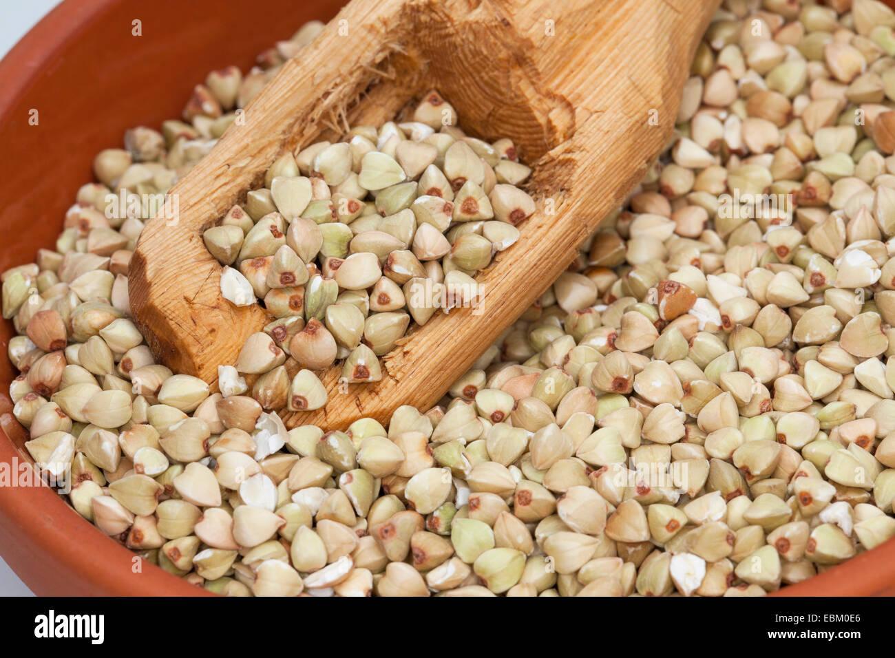 Il grano saraceno (Fagopyrum esculentum), semi nel piatto con un cucchiaio di legno Immagini Stock