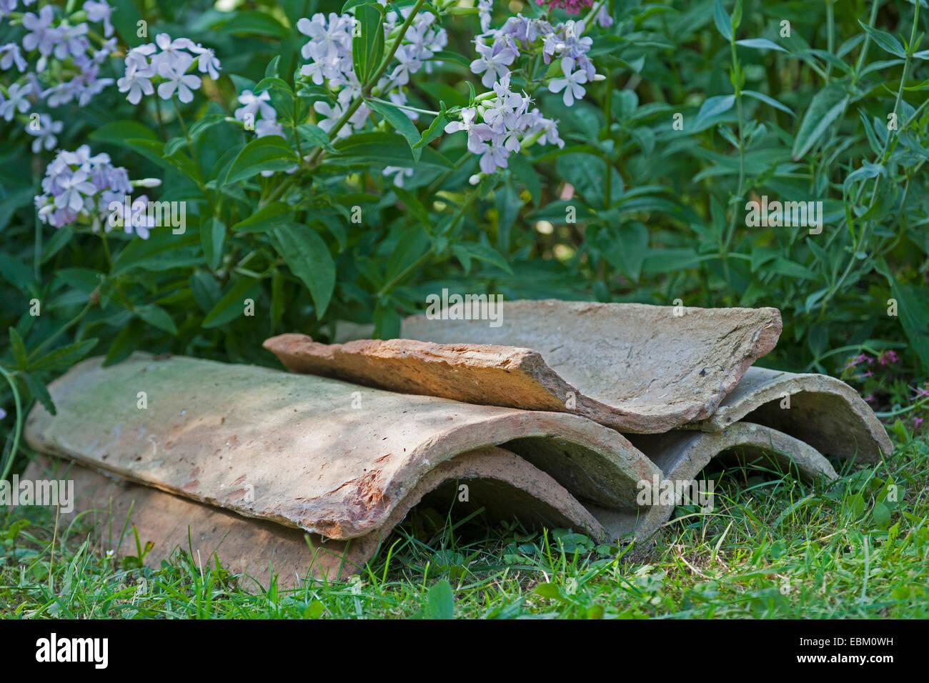 Come Dipingere Vecchie Tegole vecchio tegole in giardino servire con le loro cavità come
