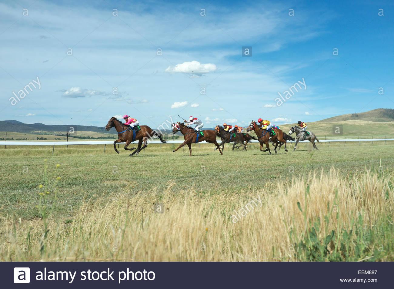 Horse Racing al Adaminaby gare, nelle montagne innevate, NSW, Australia. Immagini Stock