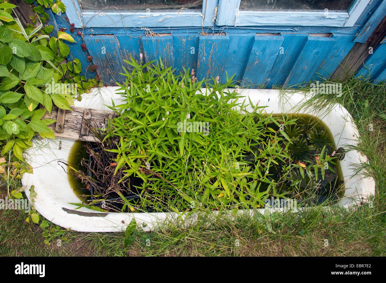 Vasca da bagno per giardino vasca e doccia combinate for Vasca per stagno