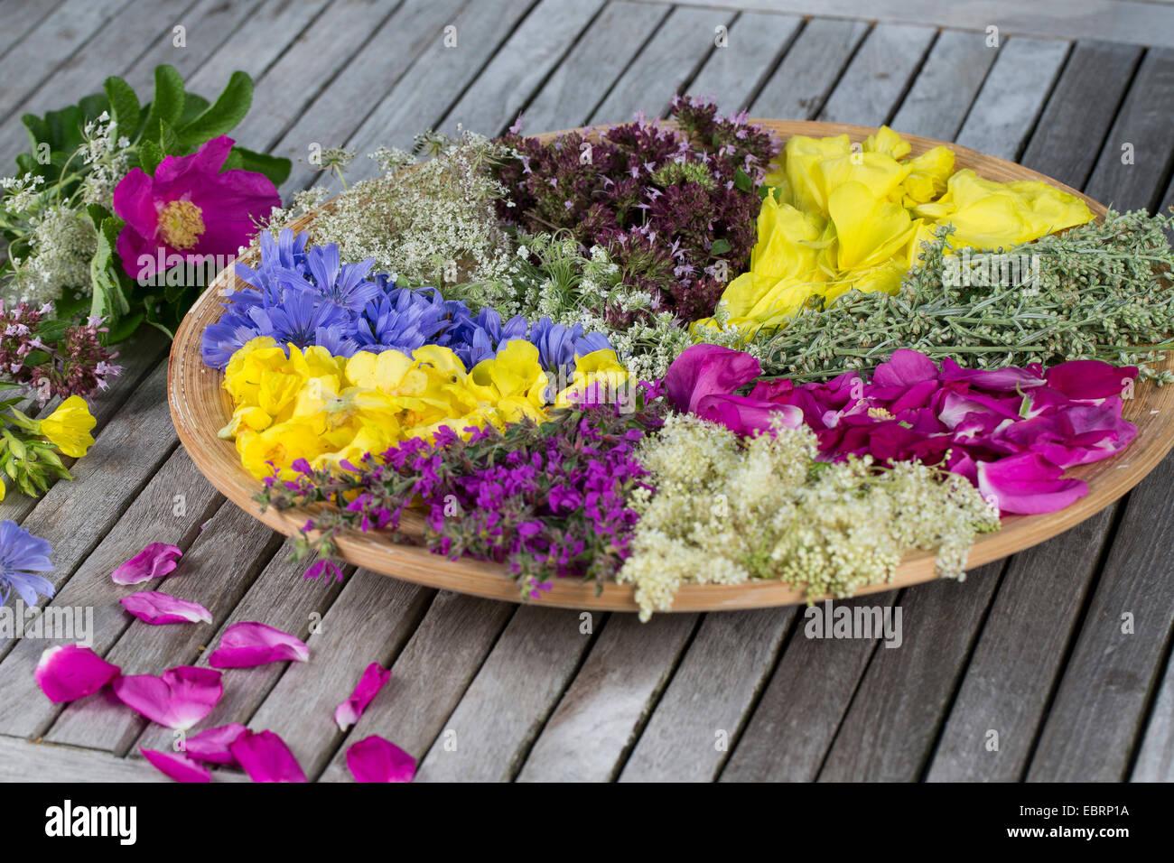 Ordinati blossoms essiccazione su una piastra Immagini Stock
