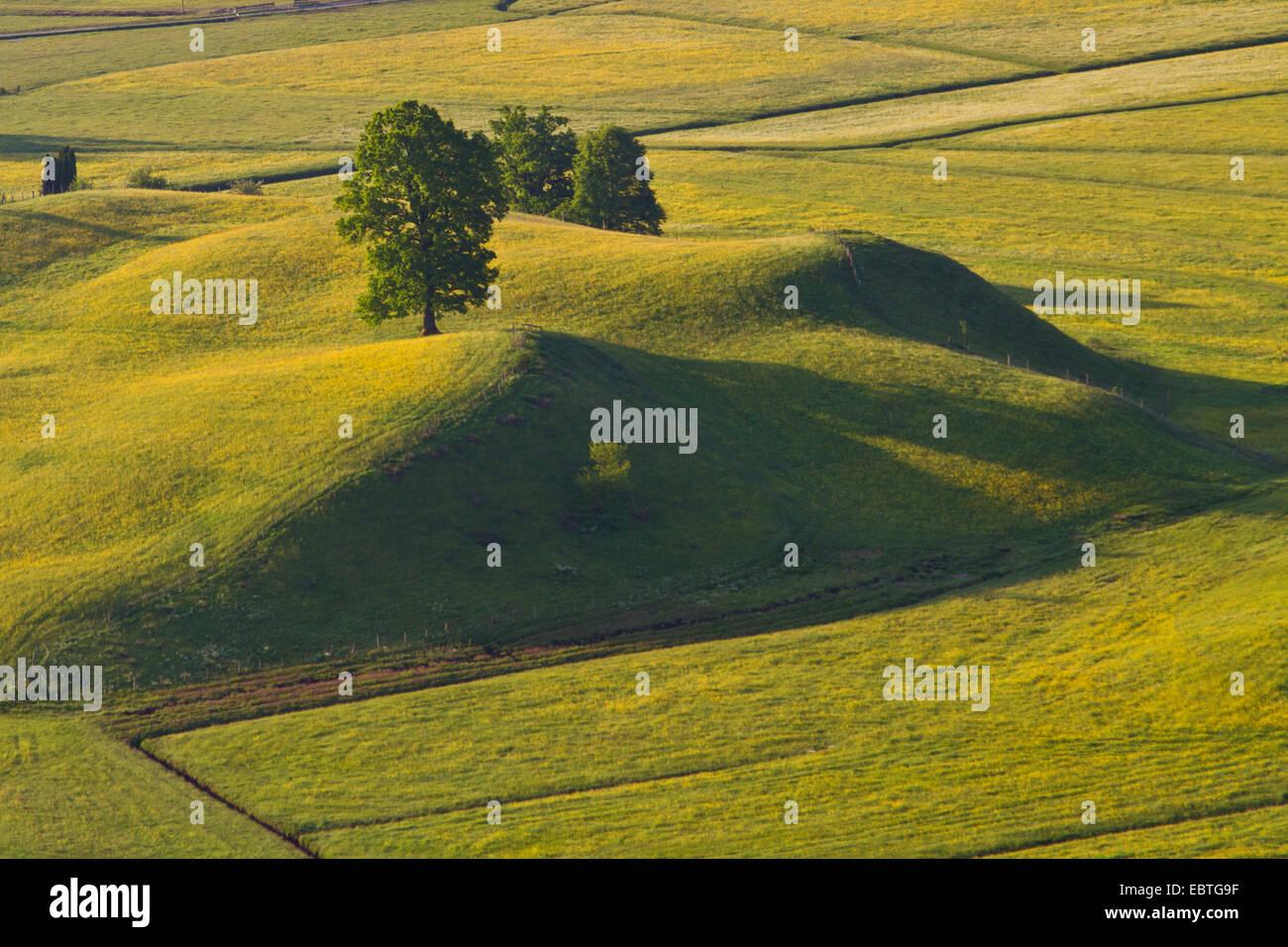Prato e il paesaggio collinare a Murnauer Moos, in Germania, in Baviera, Eschenlohe Immagini Stock