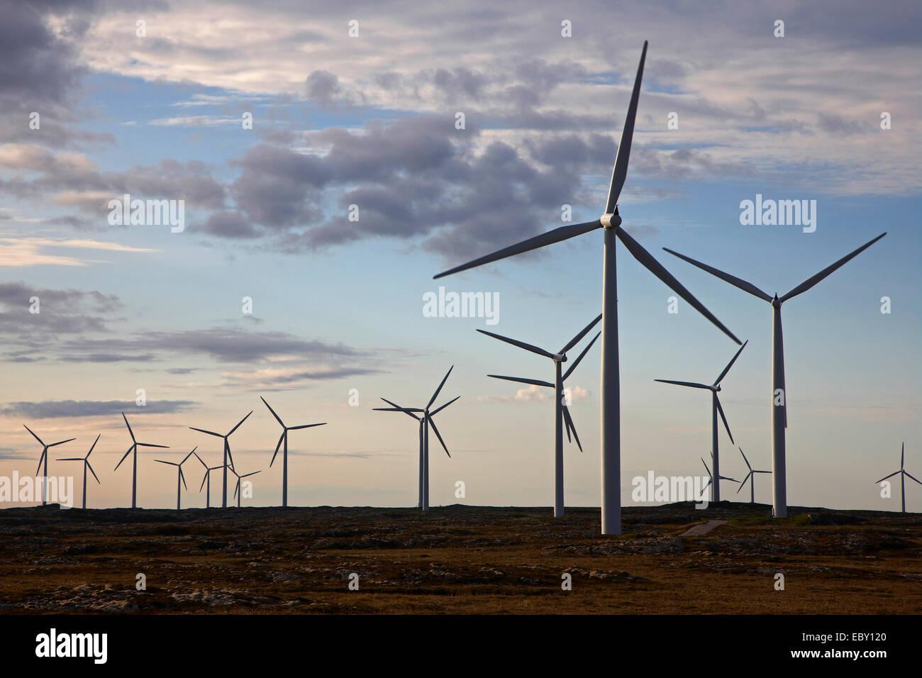 Impianto di energia eolica presso l'isola Smola, Norvegia, il Trondelag, Mittelnorwegen, Smola Immagini Stock