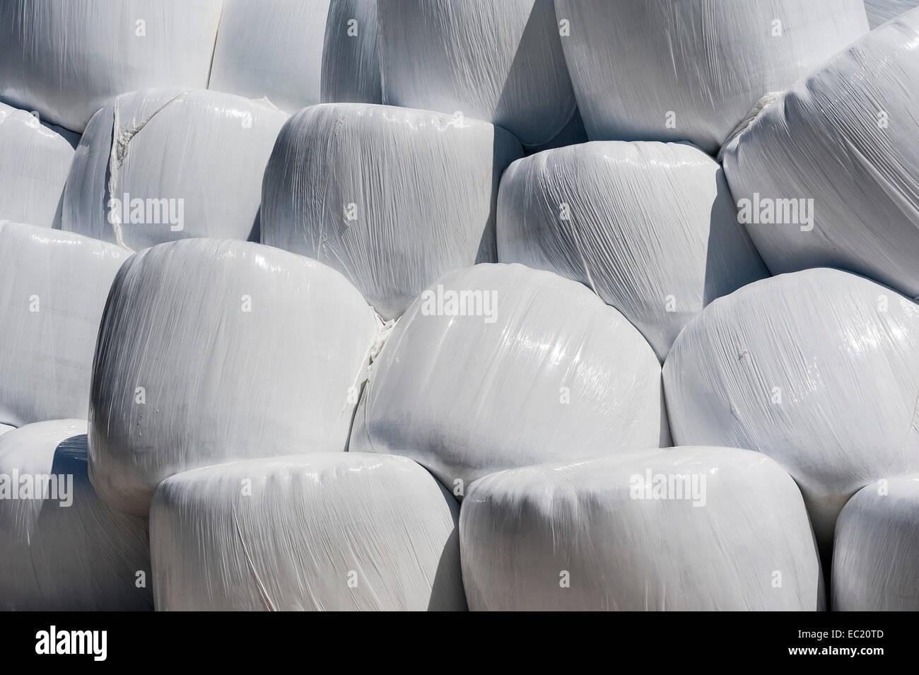 Balle di fieno in involucro di plastica, Baviera, Germania Immagini Stock
