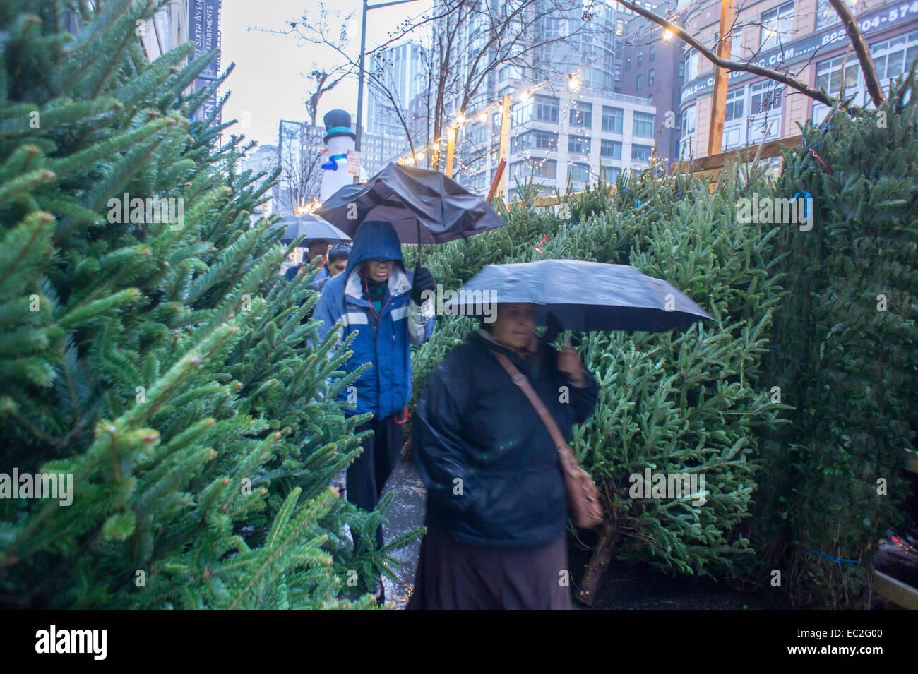 Albero Di Natale 94.Alberi Di Natale E Decorazioni In Vendita Nel Quartiere Di Chelsea Di New York Sabato 6 Dicembre 2014 Secondo La American Albero Di Natale Associazione Lo Scorso Anno Gli Americani Hanno Mostrato