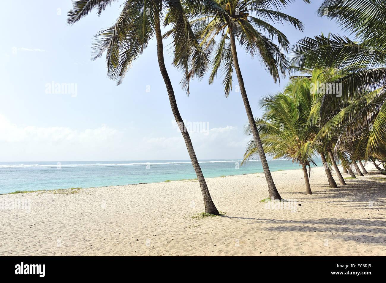 Spiaggia da sogno per rilassare il vostro corpo e la vostra mente Immagini Stock