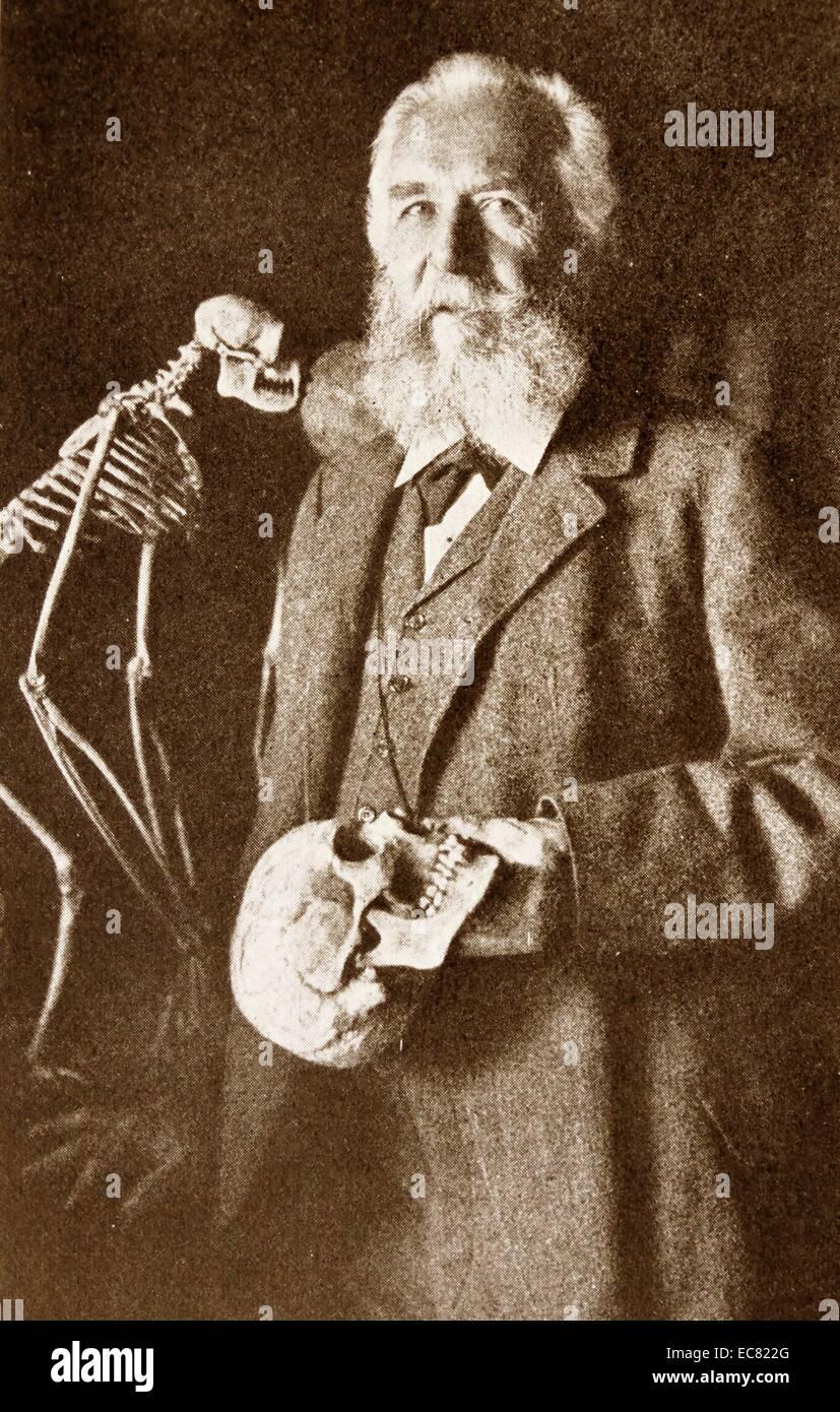 Ernst Heinrich Philipp August Haeckel (Febbraio 16, 1834 - Agosto 9, 1919) Immagini Stock