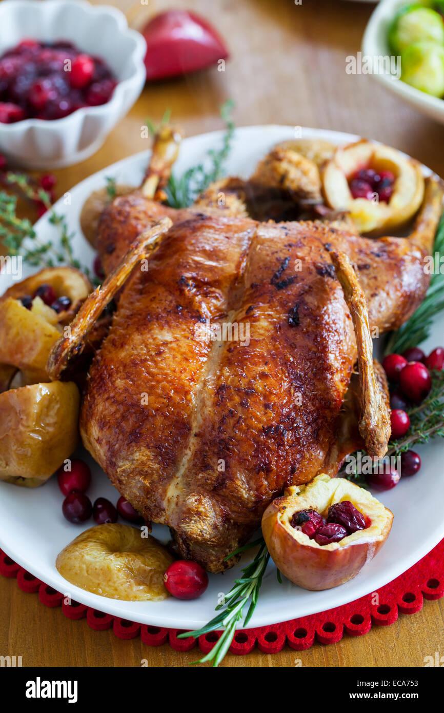 Festive anatra arrosto con mele e mirtilli rossi Immagini Stock