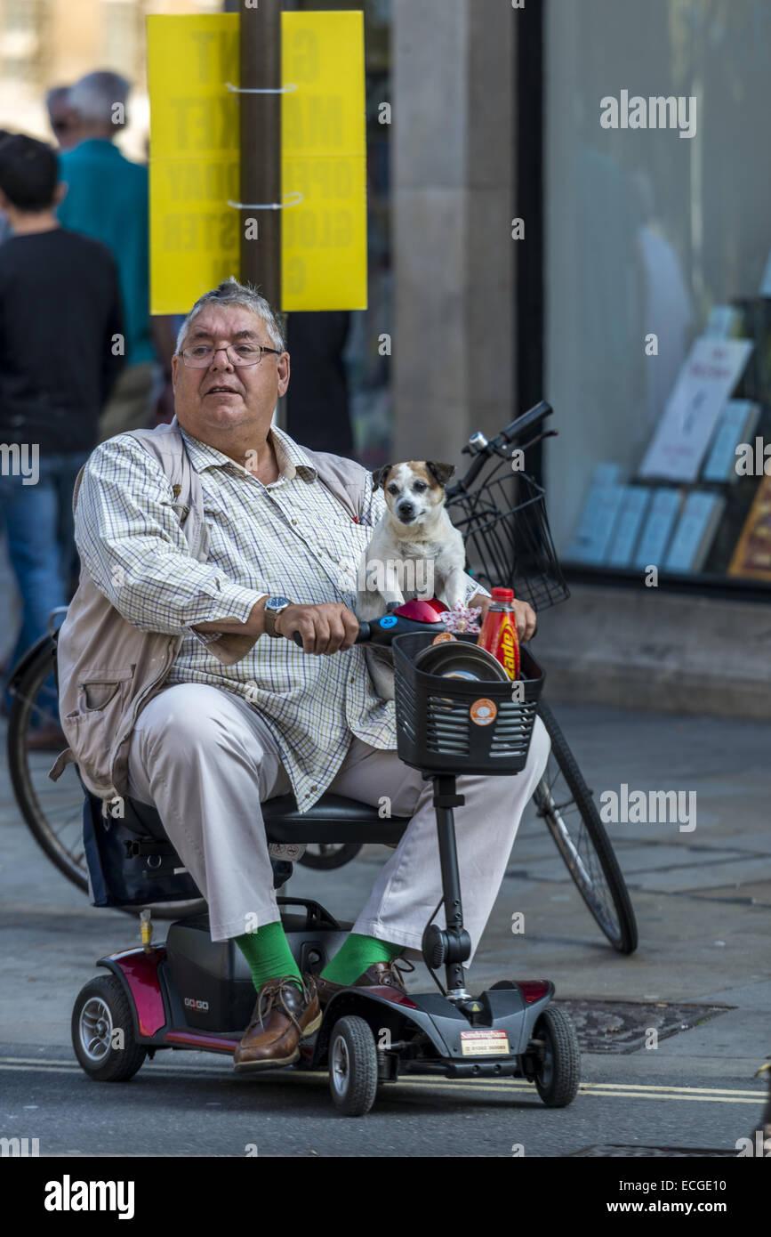Un uomo su un handicap scooter con piccolo cane sul suo giro in Oxford, Inghilterra Immagini Stock