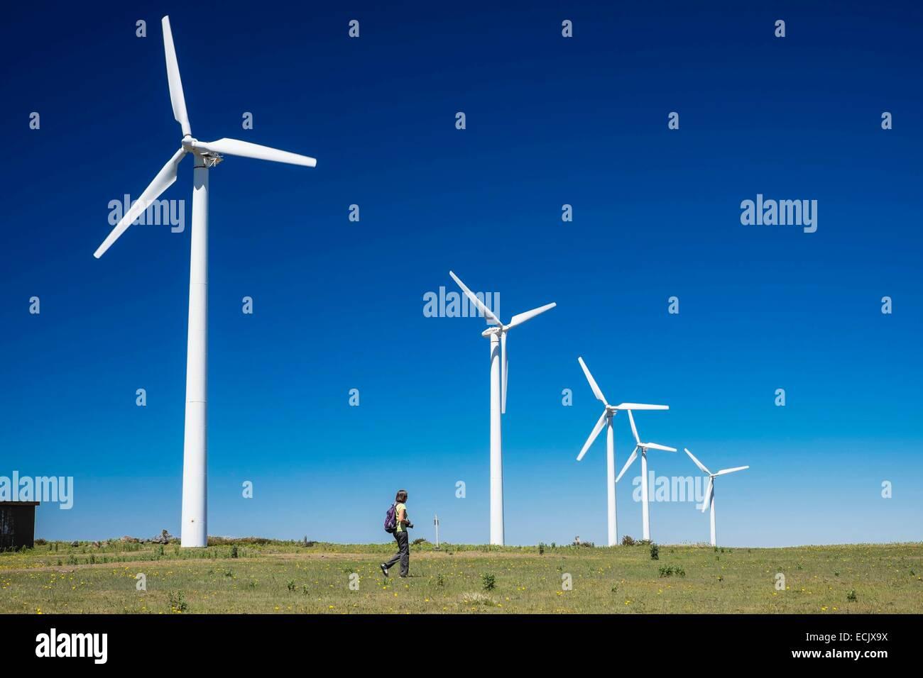 Il Portogallo, l'isola di Madeira, Paul da Serra altopiano nel centro dell'isola, wind farm Immagini Stock