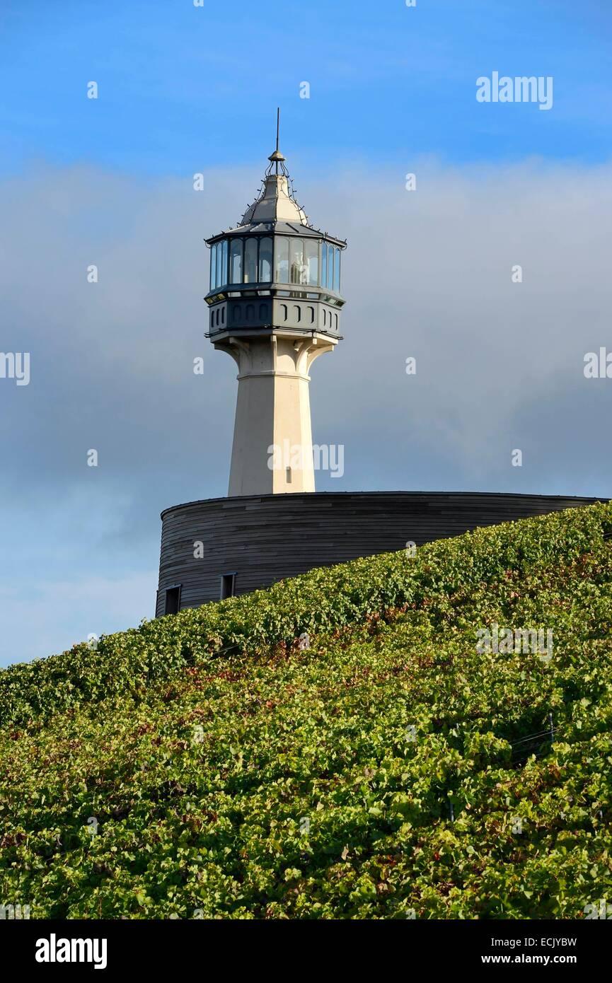 Francia, Marne, parco regionale delle Montagne de Reims, Verzenay, vigneti champagne e il museo del vino Immagini Stock
