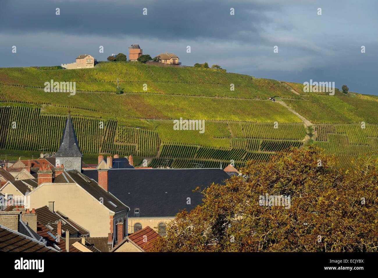 Francia, Marne, Parc naturel de la Montagne de Reims (parco naturale delle Montagne de Reims), Verzenay, vigneti Immagini Stock