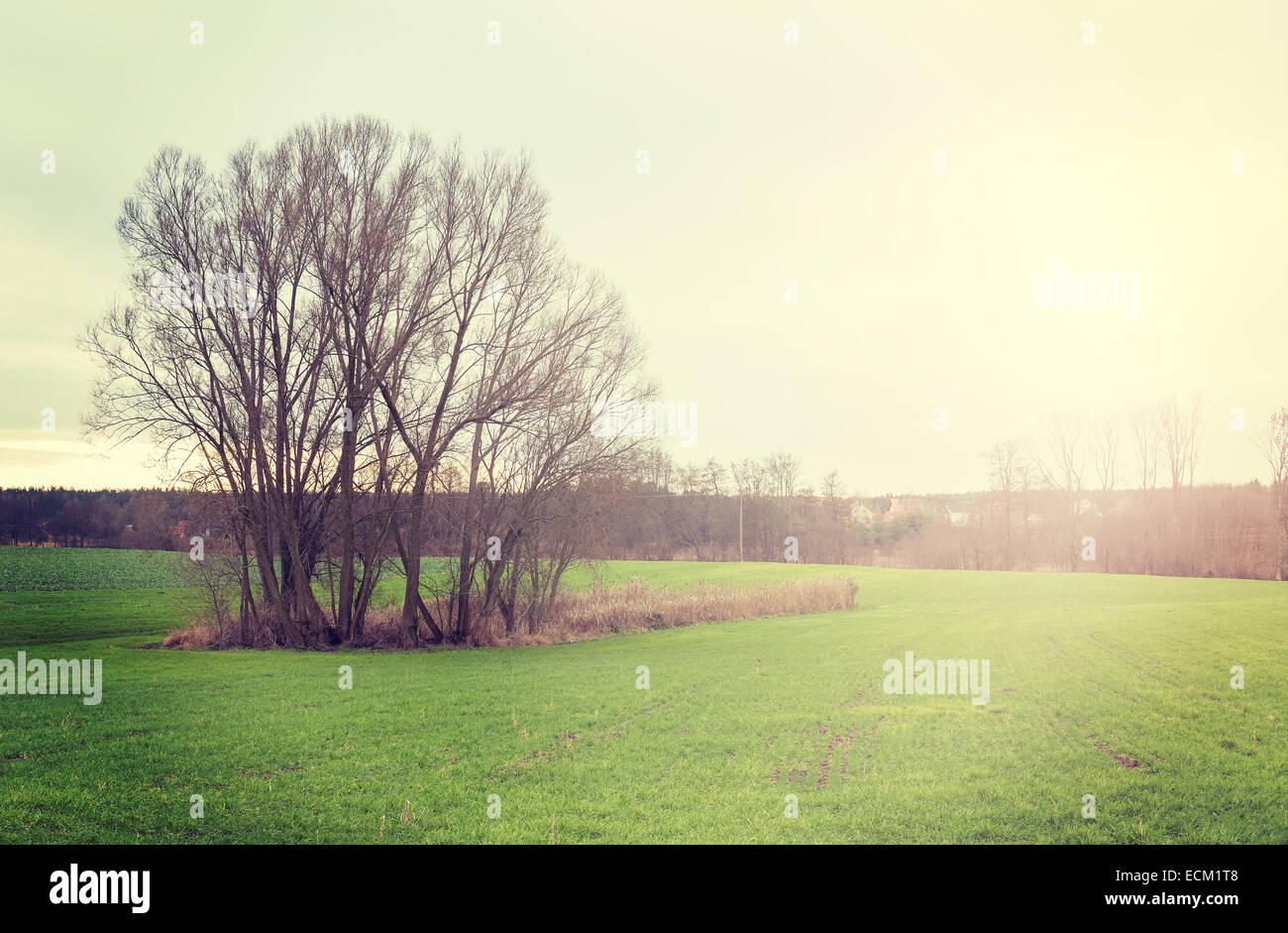 Tramonto sul campo, vintage stile retrò natura dello sfondo. Immagini Stock