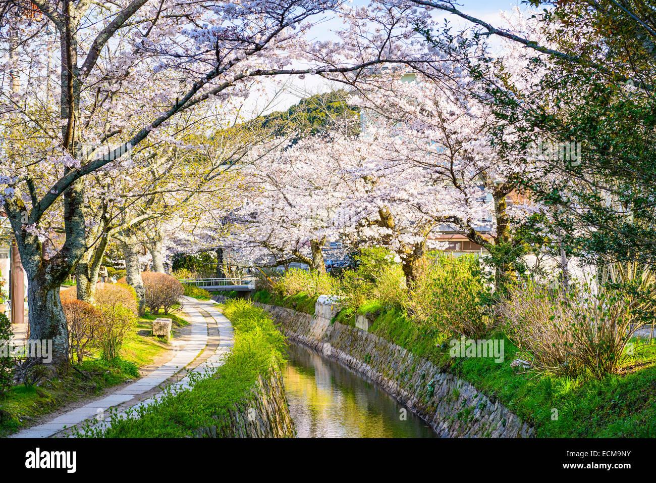 Kyoto, Giappone al filosofo il modo in primavera. Immagini Stock