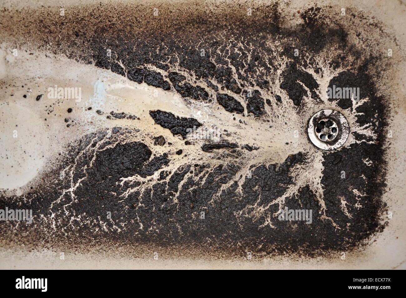 Vasca Da Bagno Intasata : Clogged drain immagini & clogged drain fotos stock alamy