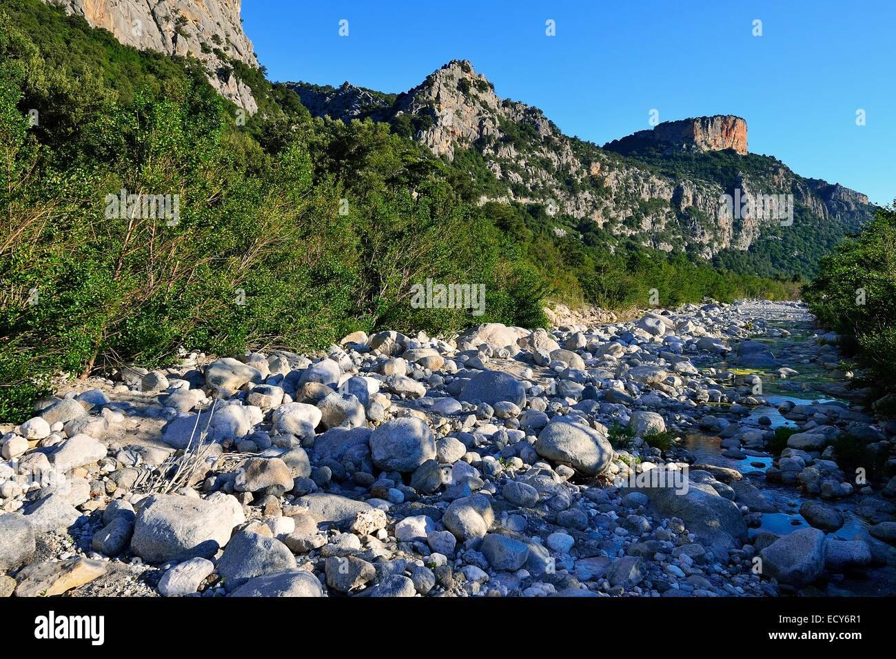 Quasi il letto asciutto del fiume del Riu Fiumineddu, Parco Nazionale del Gennargentu, il Supramonte, Provincia Immagini Stock