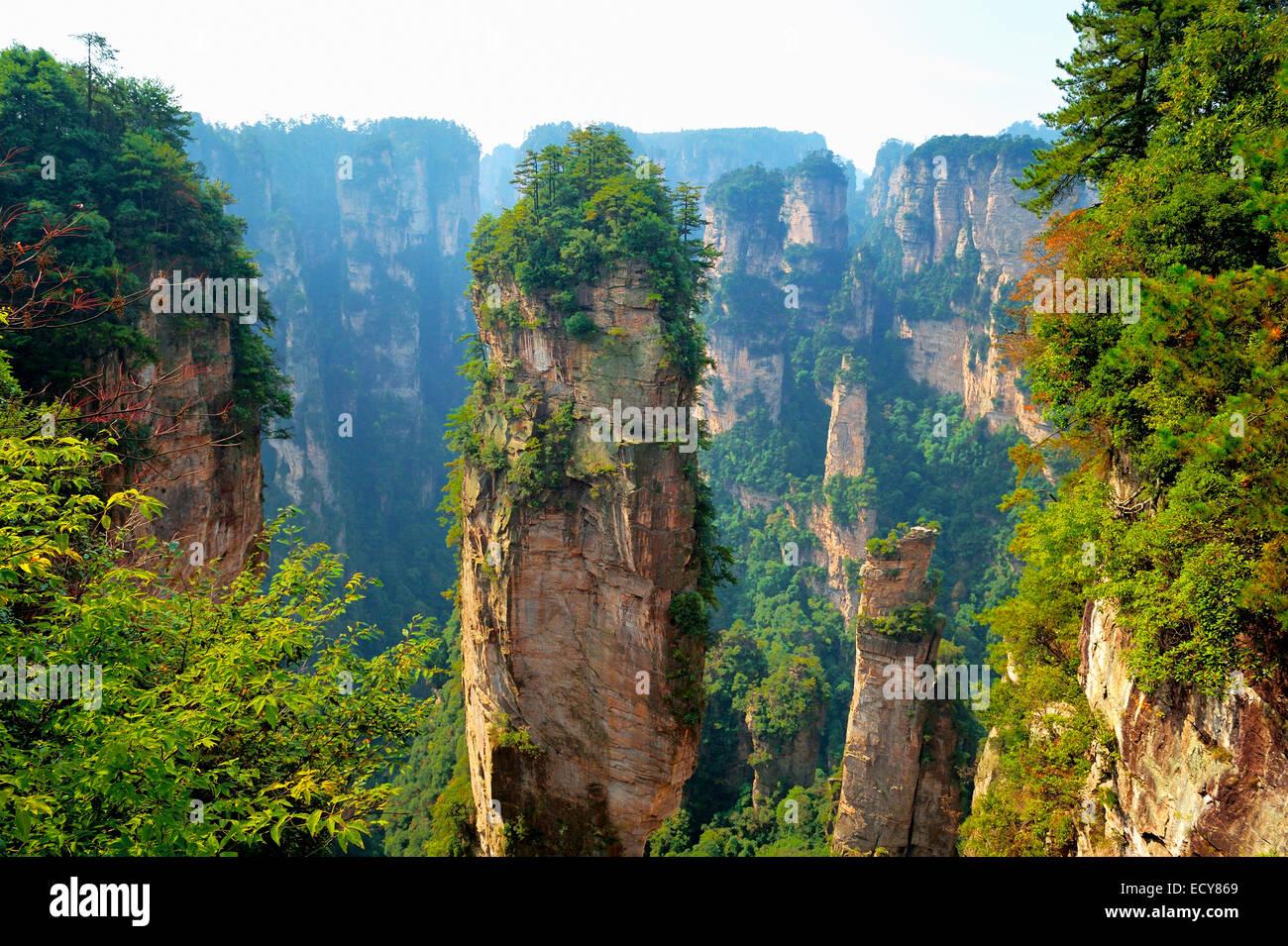 'Avatar' montagne con quarzo verticale di rocce di arenaria, Zhangjiajie National Park, nella provincia Immagini Stock