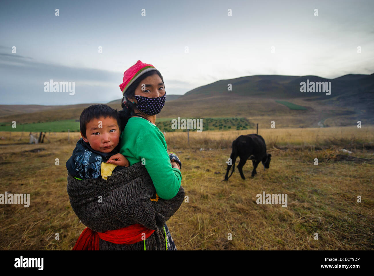 Il Tibetano madre porta in sé il figlio in una imbracatura Immagini Stock