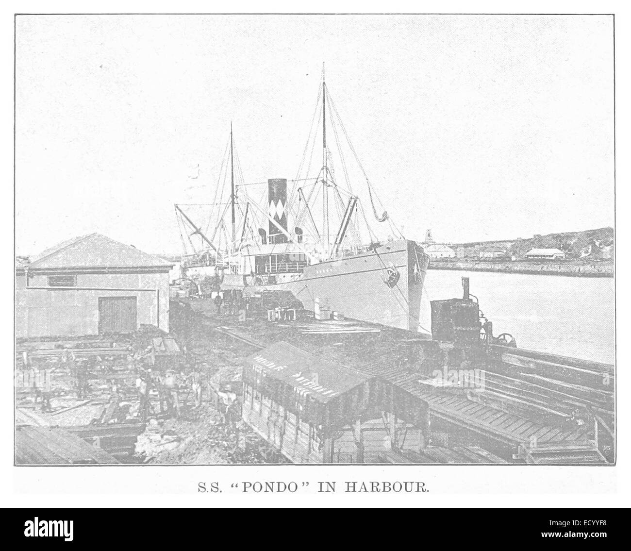 "EL1893 pg136 S.S. ""Pondo' in Porto Immagini Stock"