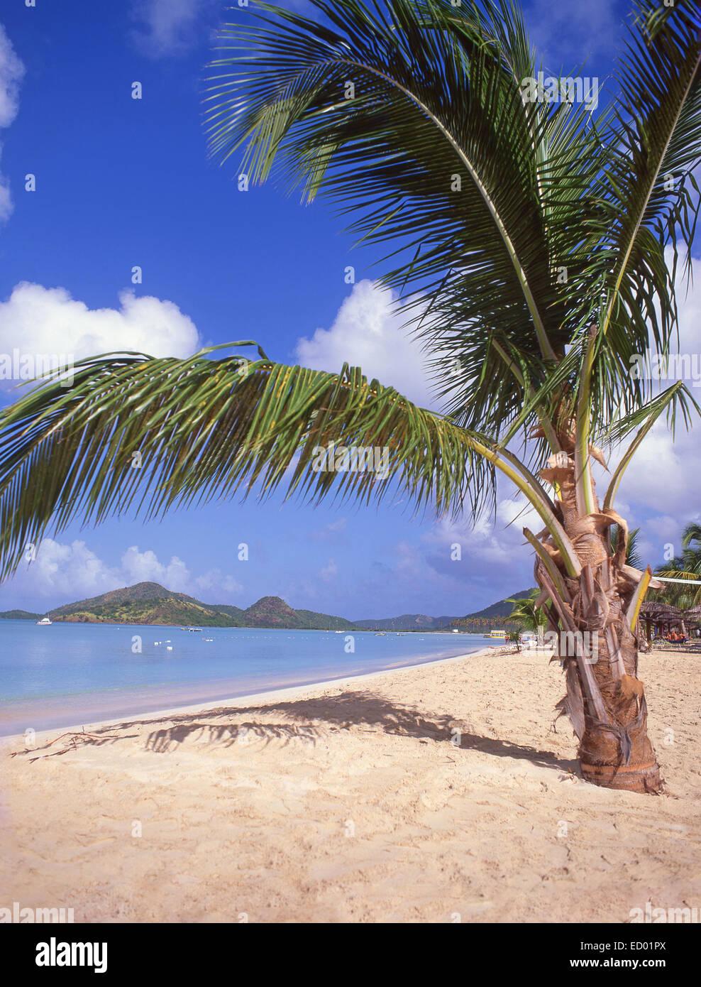 Vista della spiaggia, il Jolly Beach Resort & Spa, Saint Mary's Parish, Antigua Antigua e Barbuda, Piccole Immagini Stock
