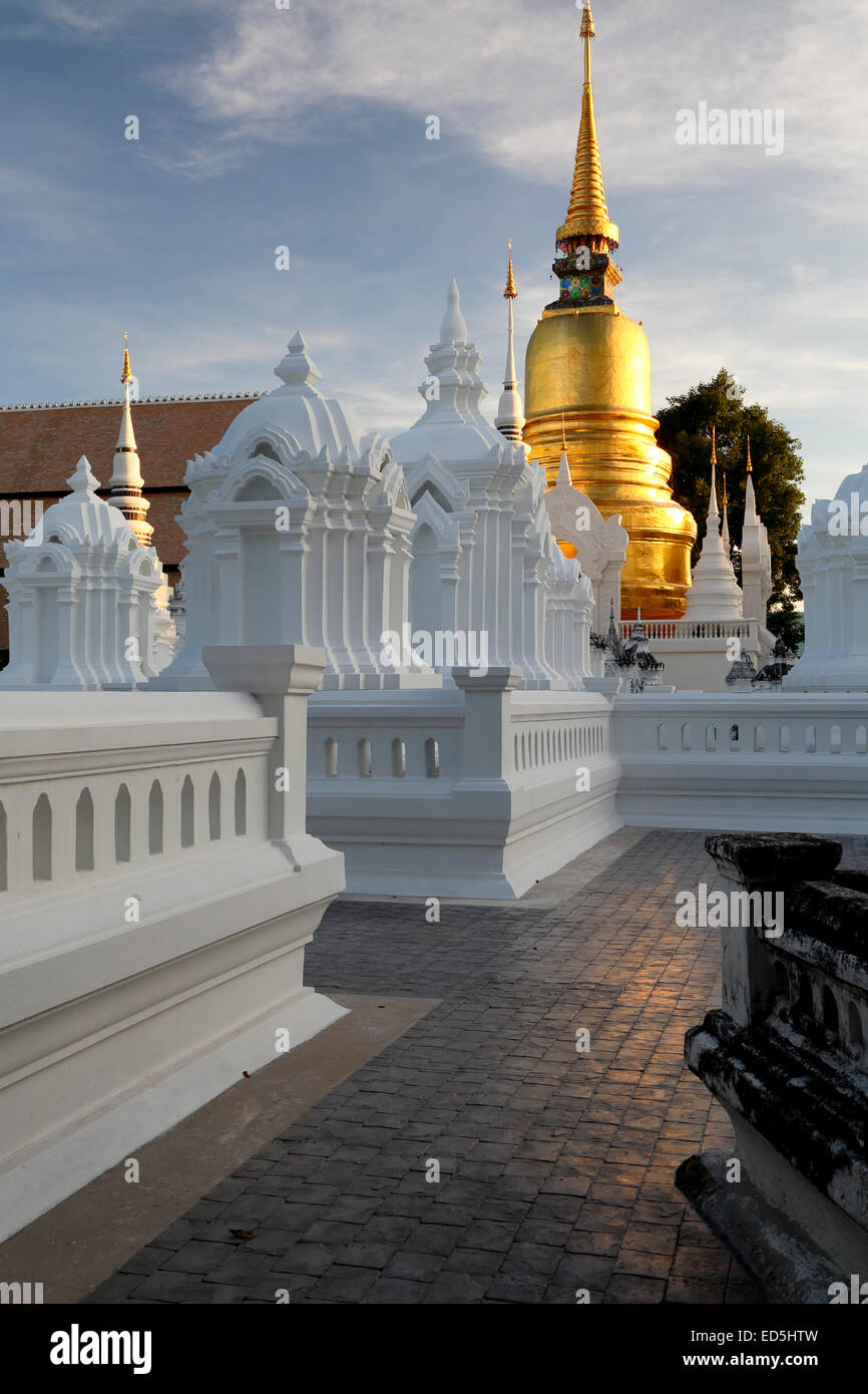 I mausolei e stupa, Wat Suan Dok, Chiang Mai, Thailandia Foto Stock