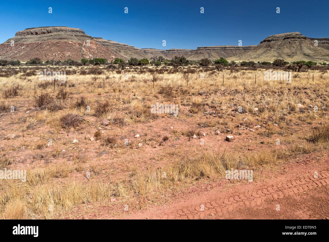 Pass Tsarishongte C19 Namib Desert Namibia Immagini Stock