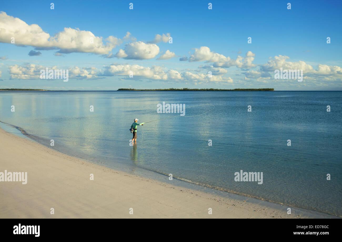 L'uomo saltwater fly fishing per bonefish in Abaco, Bahamas Foto Stock