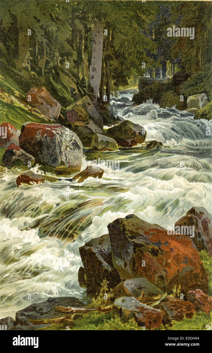 Veilchenstein im Ötztal nel Tirolo, Wildbach, Gebirgsbach Immagini Stock
