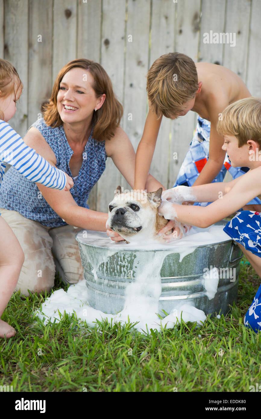 Una famiglia nel loro giardino, il lavaggio di un cane in una vasca. Immagini Stock