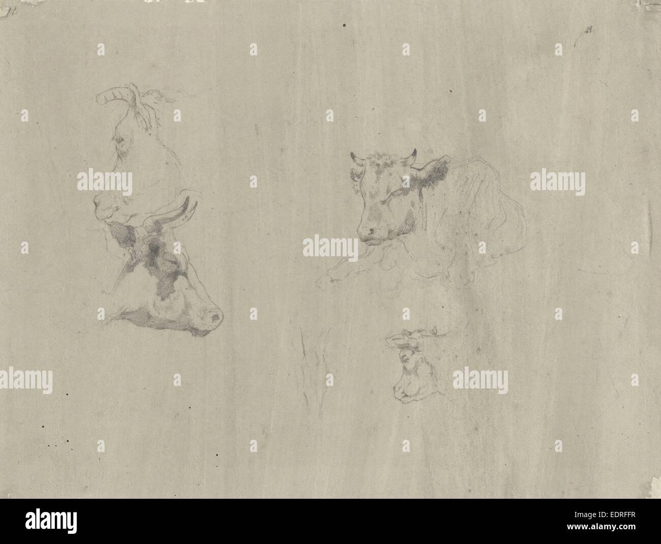 Studi di vacche, Gerard Bilders, 1848 - 1865 Immagini Stock