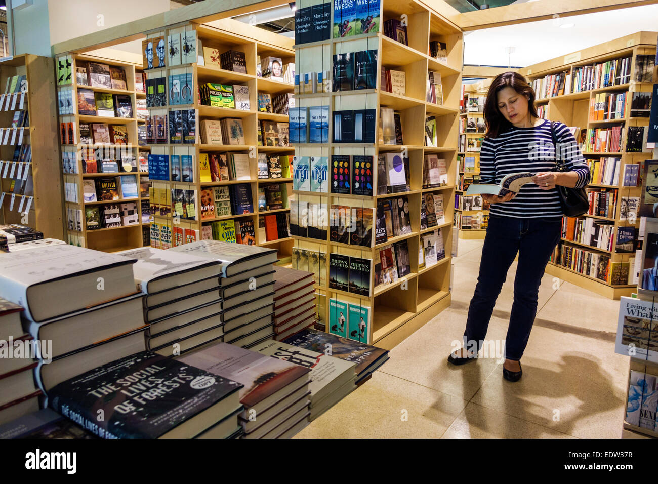 Chicago Illinois Hyde Park Campus University di Chicago il seminario Co-op librerie college bookstore interno vendita Immagini Stock