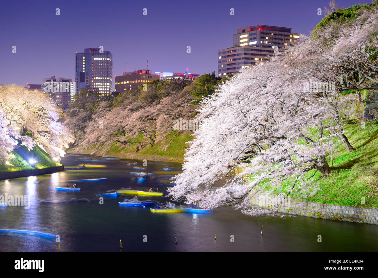 Tokyo, Giappone a Chidorigafuchi Imperial Palace fossato durante la stagione primaverile. Immagini Stock